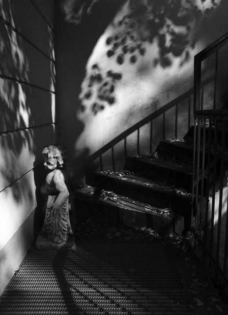 Stanko Abadžic - Cherub in Shadows