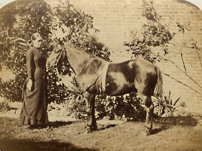 Anonymous - Lady with Horse