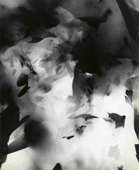 Arthur Siegel - Photogram