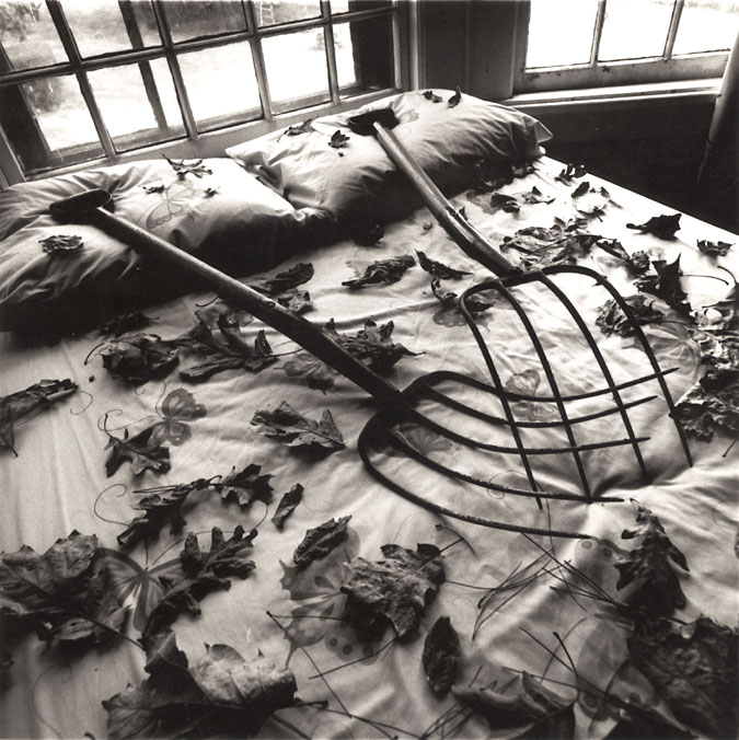 Photo Exhibit | Detail | Arthur Tress - Making Leaves, Cold Spring, NY