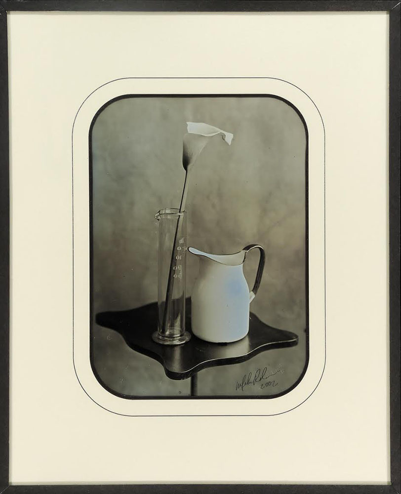 Mike Robinson - Lily & Pitcher 1