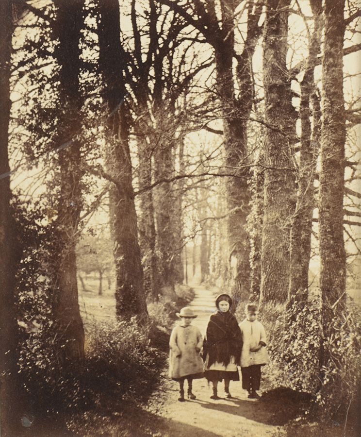 Anonymous - Three Little Girls on Wooded Path