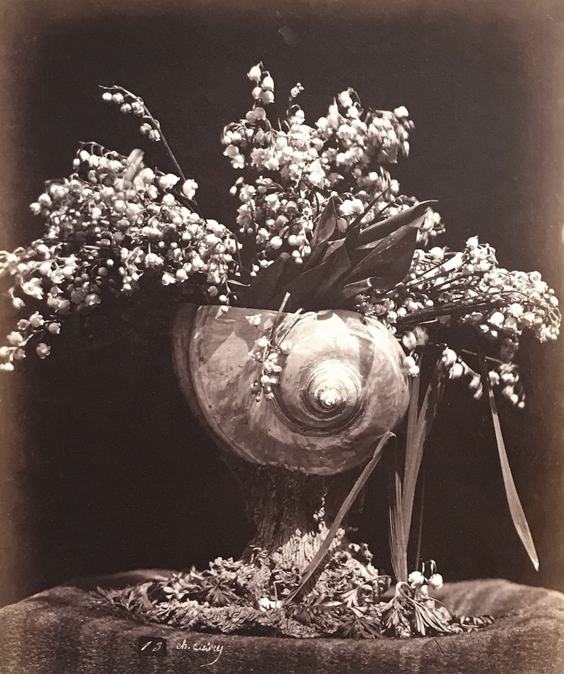 Charles Hippolyte Aubry - Lilies of the Valley in a Nautilus Shell (Muguet dans une conque)