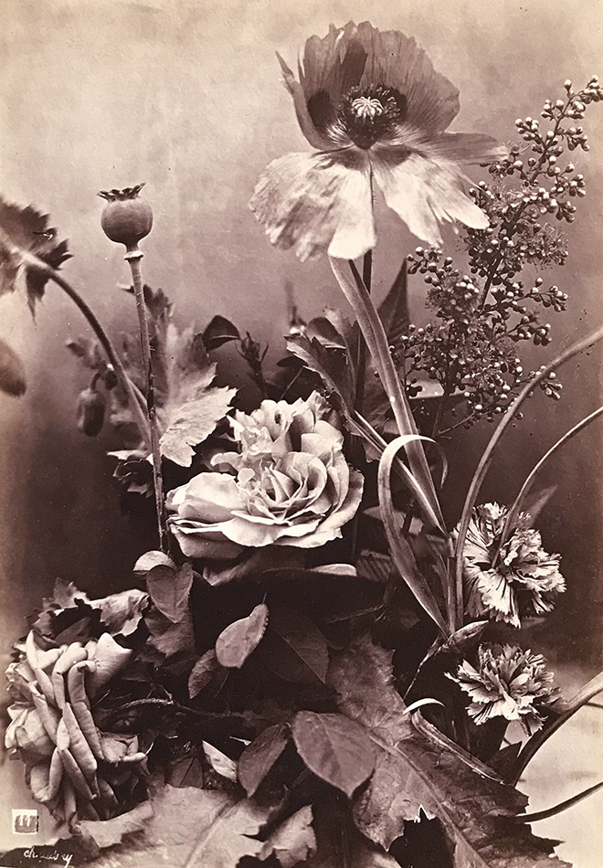 Photo Exhibit | Detail | Charles Hippolyte Aubry - Roses, Poppies and Carnations (Roses, Pavots et Oeillets)