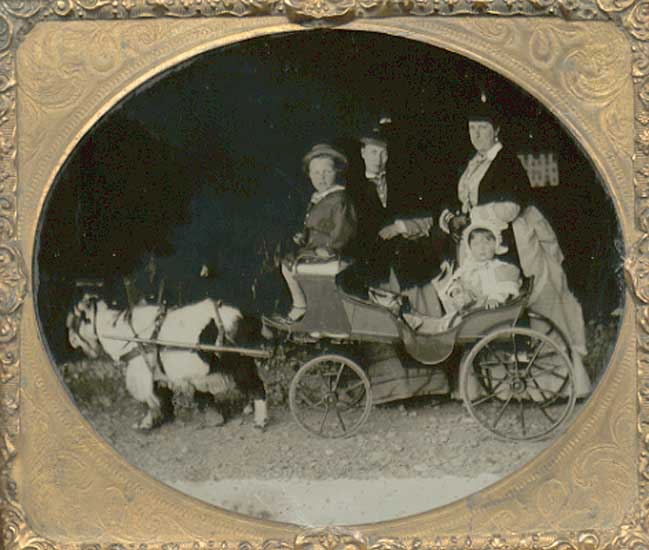 Anonymous - Group in a Fancy Cart Pulled by Goat