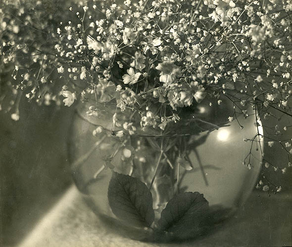 Jean-Marie Auradon - Still Life of Flowers in a Glass Bowl of Water