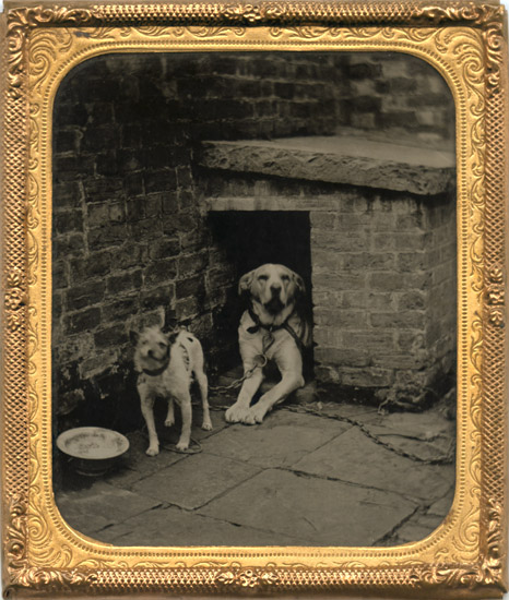 Anonymous - Two Dogs by a Brick Kennel with a Feeding Bowl