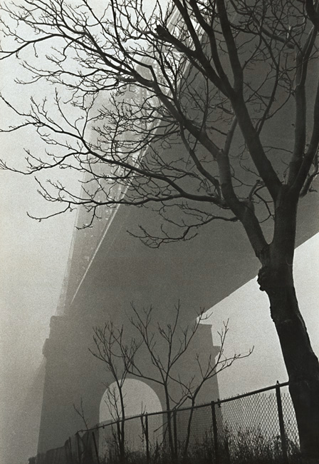 Susan McCartney - 59th Street Bridge in Fog, New York City, NY