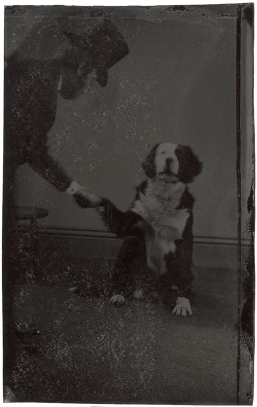 Photo Exhibit | Detail | Anonymous, American - Dog Giving Paw to Owner